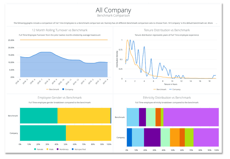 Namely's Company Insights Dashboard