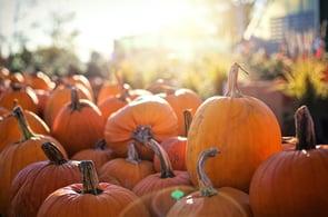 8 Spooky Ways to Celebrate Halloween Virtually